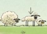 Koyun Shaun ve Arkadaşları
